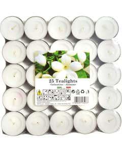 Set tealights profumati Gelsomino 25pz